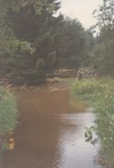 Růžená povodně