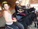 výuka jízdy na koních